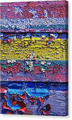 Many Colors Paint Peeling Canvas Print by Garry Gay