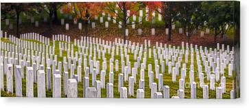 Many Have Fallen Canvas Print by Jerry Fornarotto