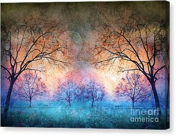 Many Moons Canvas Print by Tara Turner