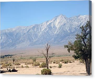 Canvas Print - Manzanar-sierra Nevada Mountains I by Harold E McCray