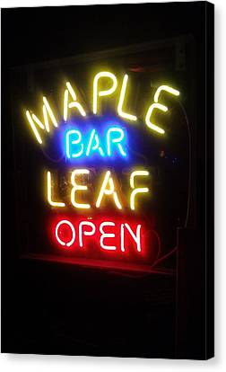 Maple Leaf Bar Canvas Print