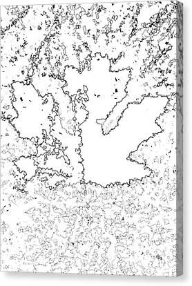 Maple Leaf Black Lines Canvas Print by R Muirhead Art
