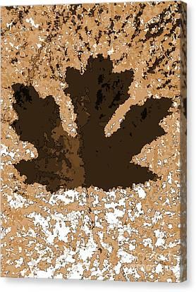 Maple Leaf Brown  Hues Canvas Print by R Muirhead Art