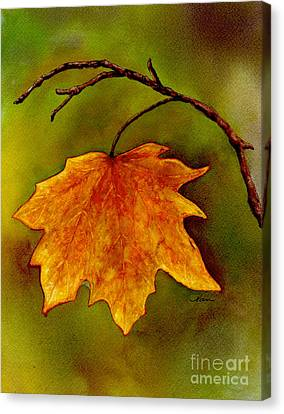 Canvas Print featuring the painting Maple Leaf In It's Yellow Splendor by Nan Wright