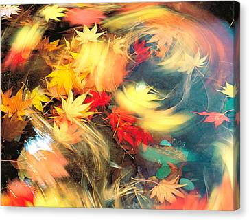 Maple Leaves, Blurred Motion Canvas Print by Panoramic Images