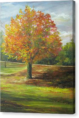 Maple Tree Canvas Print