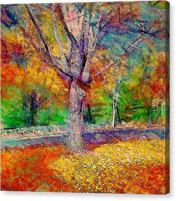 Maple Tree In Autumn - Square Canvas Print by Lyn Voytershark