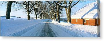 Maple Trees In Snow, Lyndonville Canvas Print by Panoramic Images