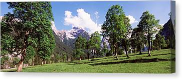 Maple Trees With Mountain Range Canvas Print by Panoramic Images