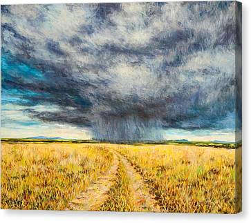 Mara Storm Canvas Print by Tilly Willis