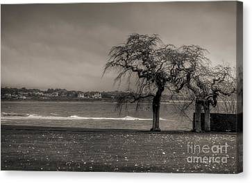 Canvas Print featuring the photograph Marble House - Newport by Vicki DeVico