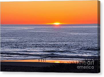 Canvas Print featuring the photograph Marbled Godwits Reflecting A Sunset by Susan Wiedmann