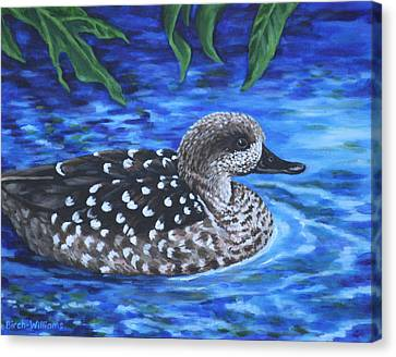 Marbled Teal Duck On The Water Canvas Print by Penny Birch-Williams