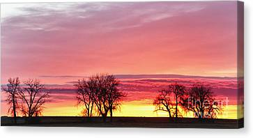 March Sunrise Panorama Canvas Print by James BO  Insogna