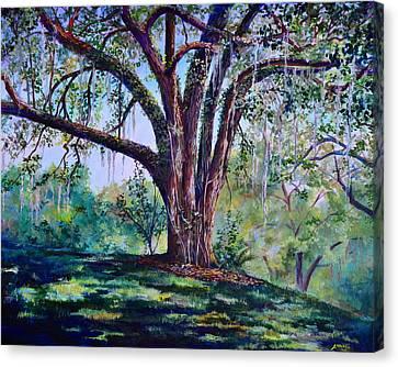 Marcus Oak Canvas Print by AnnaJo Vahle