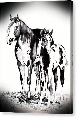 Mare And Colt Canvas Print by Cheryl Poland