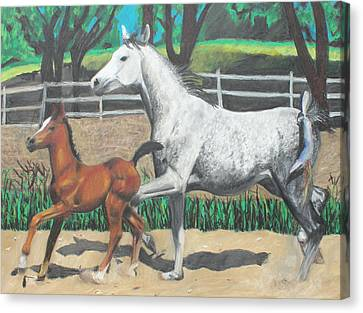 Mare And Colt Canvas Print by Jeanne Fischer