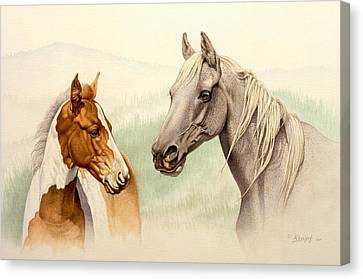 Mare And Colt Canvas Print by Paul Krapf