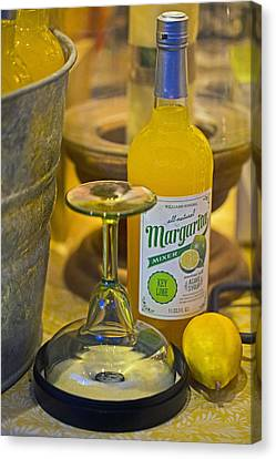 Margarita Mix Canvas Print by John Hoey