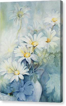 Marguerites, Alexandria Canvas Print by Karen Armitage