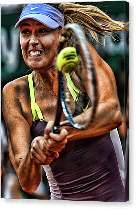 Maria Sharapova Canvas Print by Srdjan Petrovic
