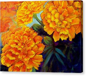 Canvas Print featuring the pastel Marigolds In Bloom Pastel  Sold by Antonia Citrino
