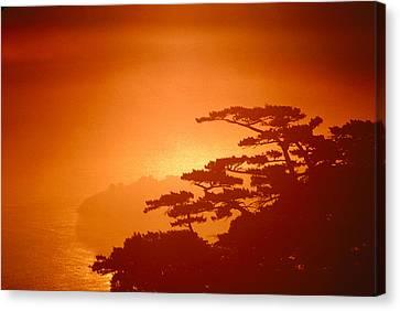Marin County Sunset Fog Canvas Print