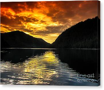 Marine Beauty Canvas Print by Robert Bales
