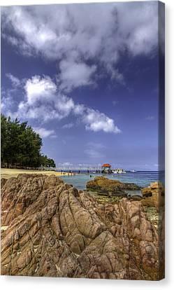 Redang Canvas Print - Marine Park by Mario Legaspi