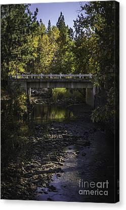 Markleeville Creek Canvas Print by Mitch Shindelbower