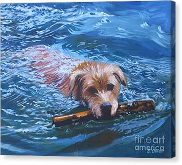 Marley Swimming Canvas Print by Elisabeth Olver