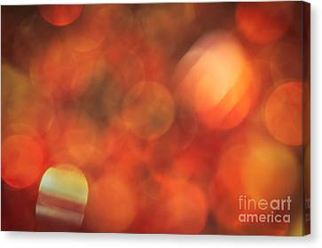 Marmalade Canvas Print by Jan Bickerton