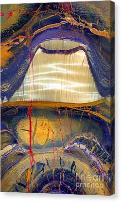 Marra Mamba Tiger Eye Canvas Print by Douglas Taylor