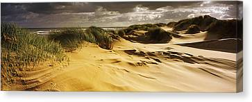 Marram Grass On The Beach, Sands Canvas Print by Panoramic Images