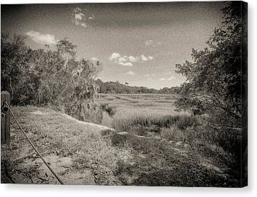 Marsh 2 Canvas Print