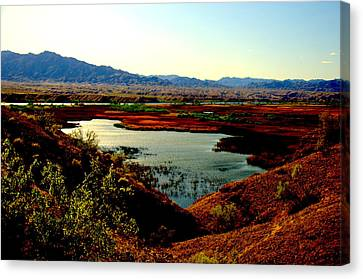 Marsh And River Canvas Print