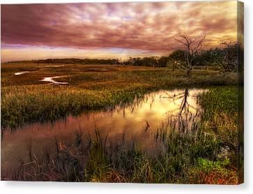 Marsh At Dawn Canvas Print by Debra and Dave Vanderlaan