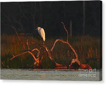 Canvas Print featuring the digital art Marsh Bird Sunrise by Deborah Smith