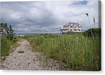 Marsh House Canvas Print by Alida Thorpe