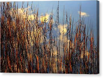 Marsh Mellow Clouds Canvas Print by Karen Wiles