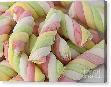 Marshmallow Twists Canvas Print by Juli Scalzi