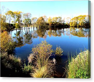 Marslands Water Ways Canvas Print by Joyce Woodhouse