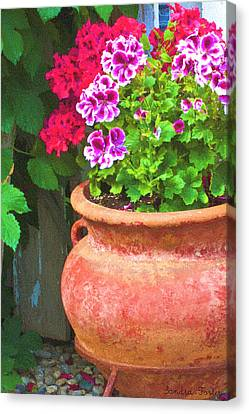 Martha Washington Geraniums In Textured Clay Pot Canvas Print by Sandra Foster