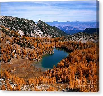 Martin Peak And Cooney Lake Canvas Print by Tracy Knauer