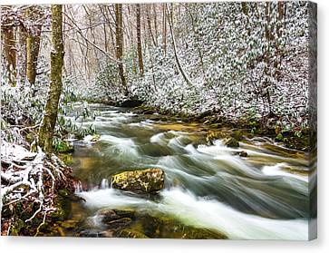 Martins Fork Winter Canvas Print by Anthony Heflin