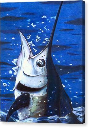 Ballyhoo Canvas Print - Marvin Sailfish by Karen Rhodes