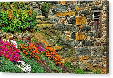 Maryland Country Roads - Walls Of Color Walls Of Stone - Carroll County Maryland Canvas Print by Michael Mazaika
