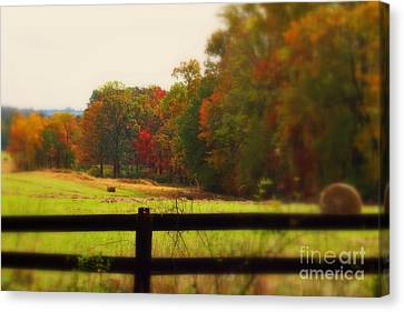 Maryland Countryside Canvas Print