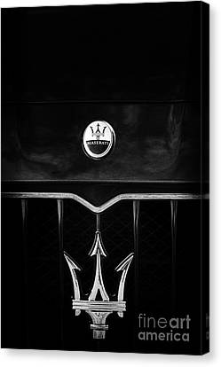 Maserati Quattroporte Monochrome Canvas Print by Tim Gainey