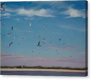 Masonboro Airshow Canvas Print by Christopher Reid